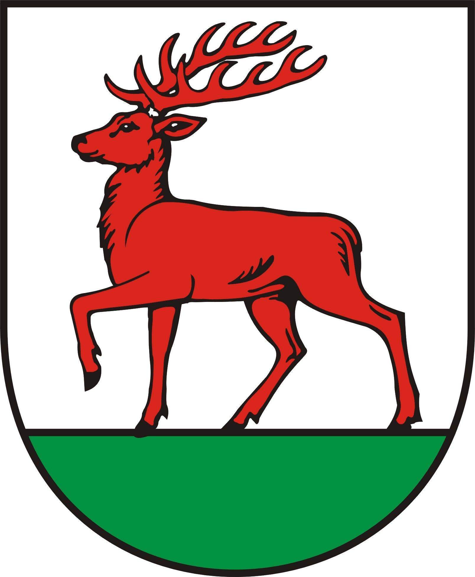 Ilustracja do informacji: Mieszkańcy gminy Rzepin wybrali swoich przedstawicieli!